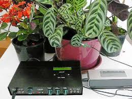 aparato-y-planta-3